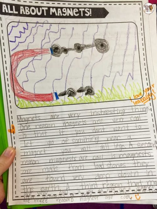 small resolution of Magnets: 1st Grade Science - The Brown Bag Teacher