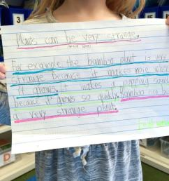 Paragraph Writing in 1st and 2nd Grade - The Brown Bag Teacher [ 768 x 1024 Pixel ]