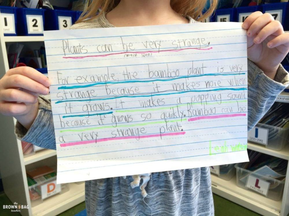 medium resolution of Paragraph Writing in 1st and 2nd Grade - The Brown Bag Teacher
