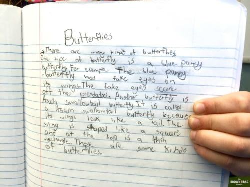 small resolution of Paragraph Writing in 1st and 2nd Grade - The Brown Bag Teacher