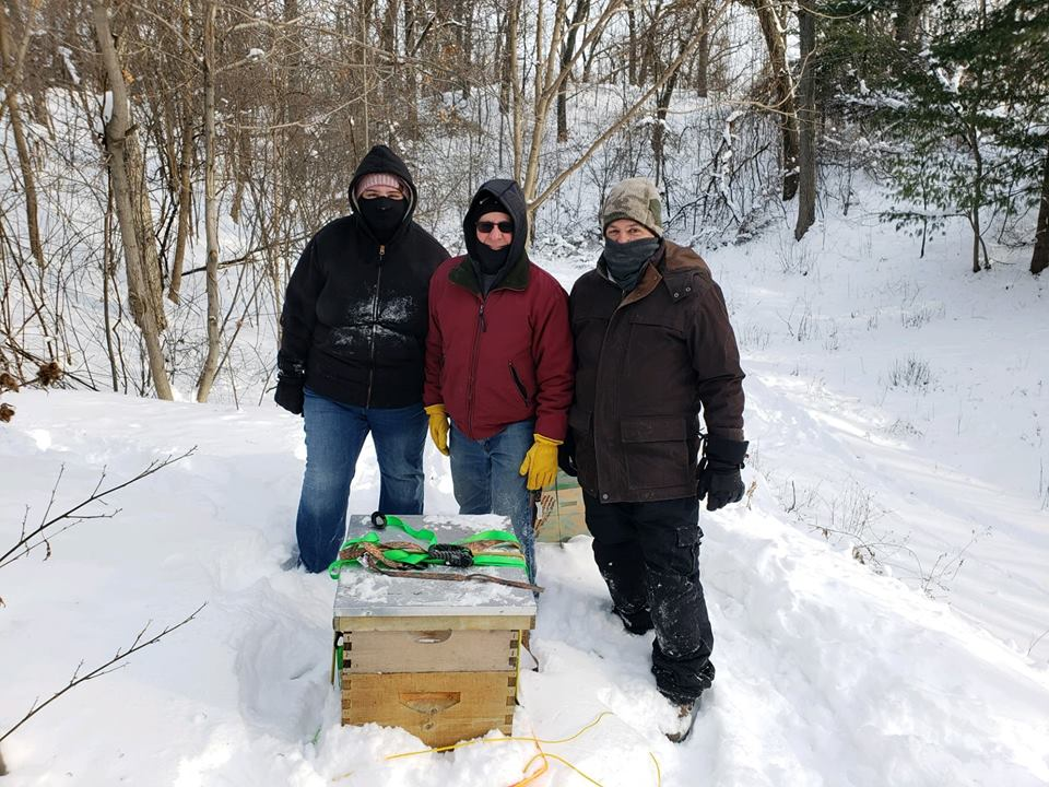 Moving hive in the winter
