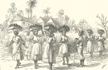Women Collecting Bottles, Barbadoes, May 5, 1888, 475