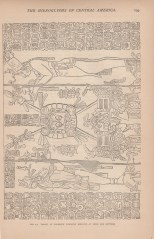 The Hieroglyphs of Central America, The Century, Vol. 23, 1881-2 11