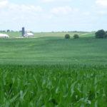Predicting the next big yielding hybrid