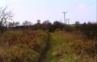 Old railway embankment 1993
