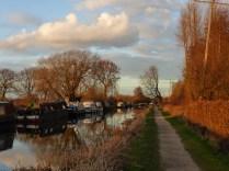 Bodymore Heath in the golden hour