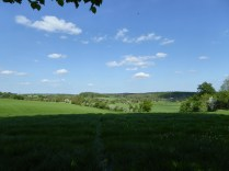 The Needwood Valley basking in the sunshine