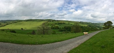 Overlooking the Manifold Valley at Rushley