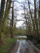 The ford has had tarmac laid through it, but it's still flowing and muddy! It's seasonal, and dries to a trickle in dry summers.