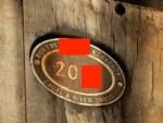 quiz-10