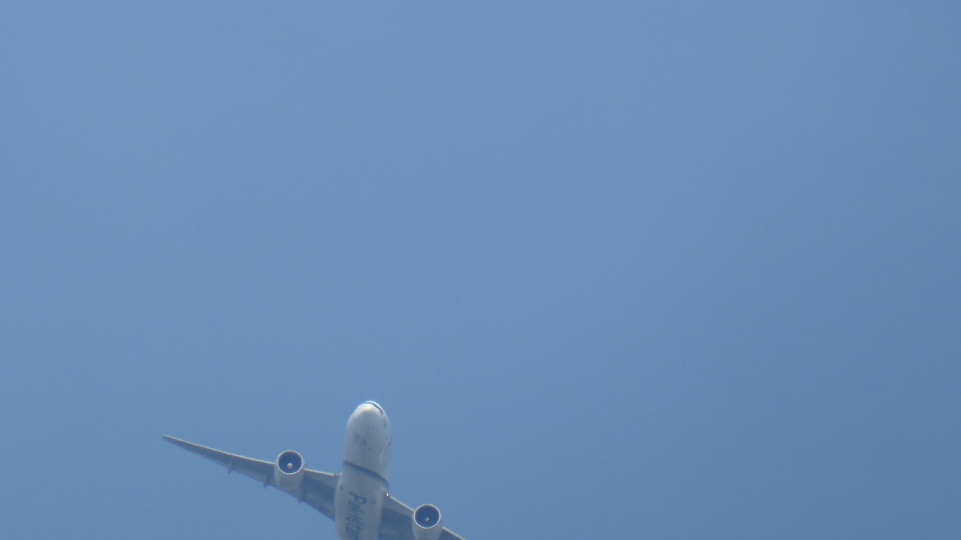 A fleeting glimpse of a passing airliner, not framed properly. Was this an omen?