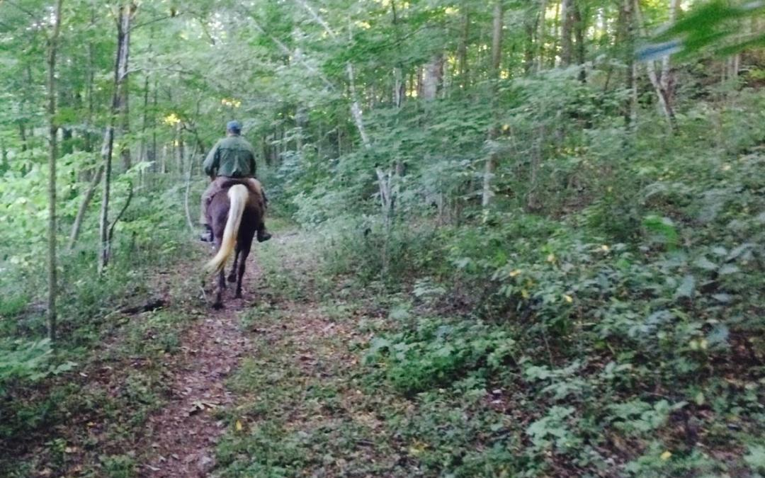Trail Ride is ON Today!