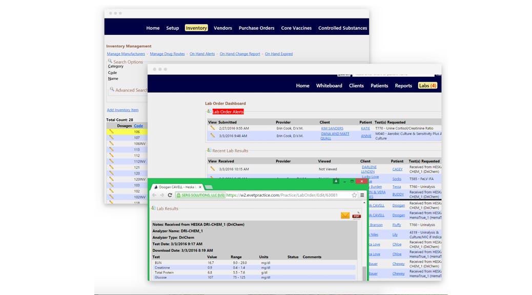 eVetPractice screen shot