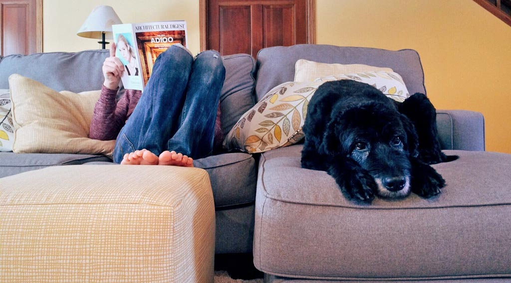 Woman reading magazine with dog
