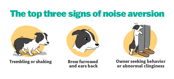 Illustrations Showing Noise Aversion Symptoms