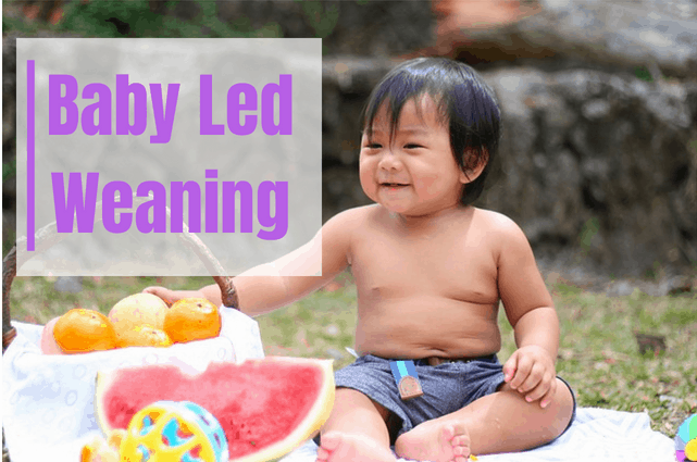 Baby Led Weaning: First Foods For Baby