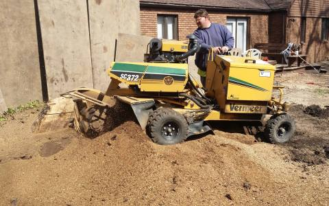 Tree Stump Grinding & Removal Springfield IL 9 | Brown Storm Service