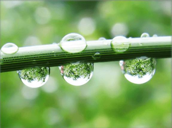 rain drops picture