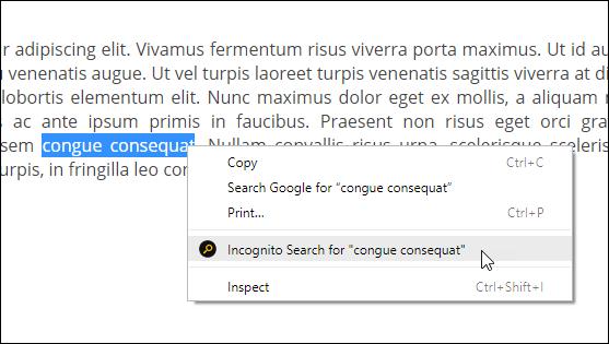 incognito search