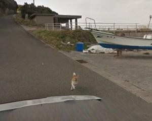 グーグルストリートビューを追いかける犬