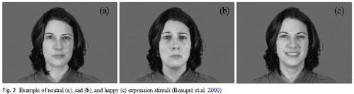 表情を見て感情を評価させるテスト