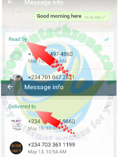 how to know who has read your message in a WhatsApp group