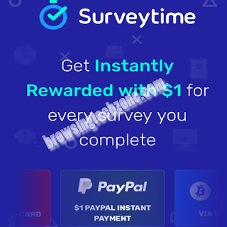 Surveytime.io review