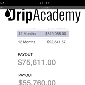 Download Phil Mentoring – Drip Academy