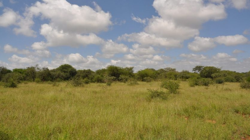Farm For Sale In Simanjiro-5000 Acres