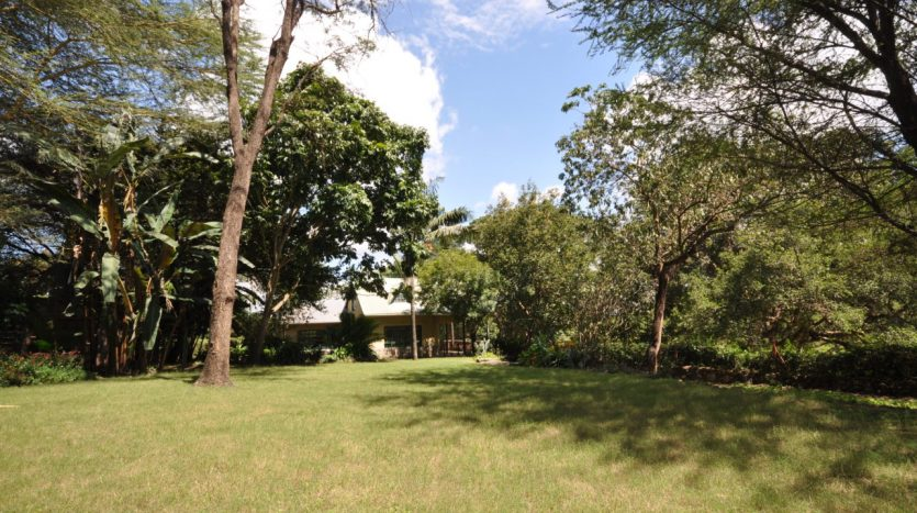 House For Sale In Usariver with 25 Acres8