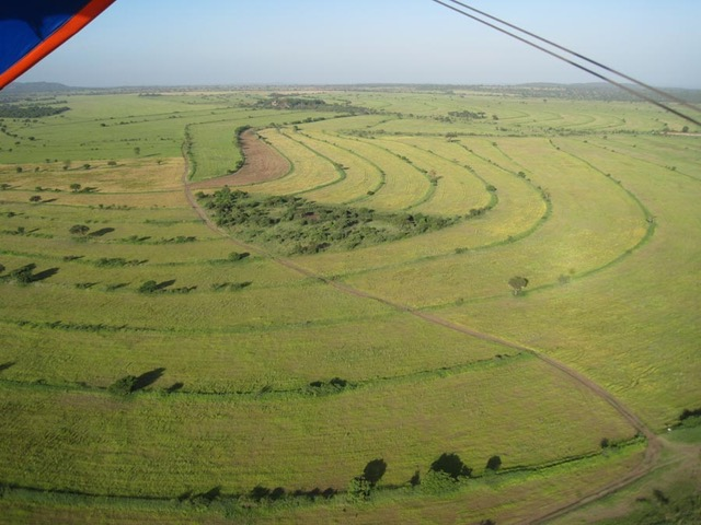 Working farm for sale near Lolkisale, Arusha