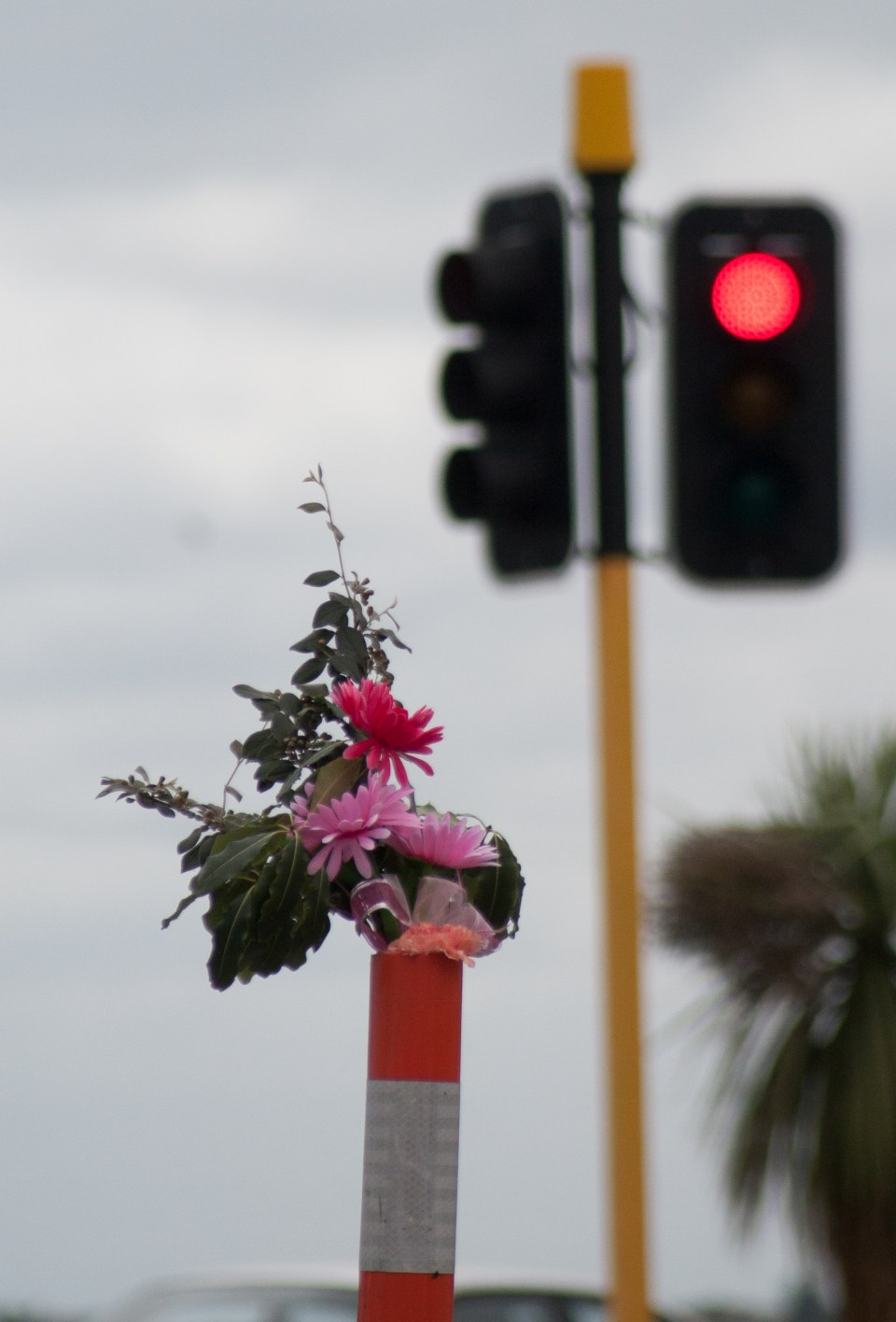 flowers in a road cone - two years exactly from the 22/02/2011 christchurch earthquake