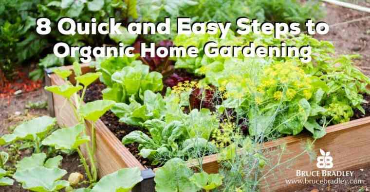 Looking to start an organic garden? Here are 8 Quick and Easy Steps to getting started!