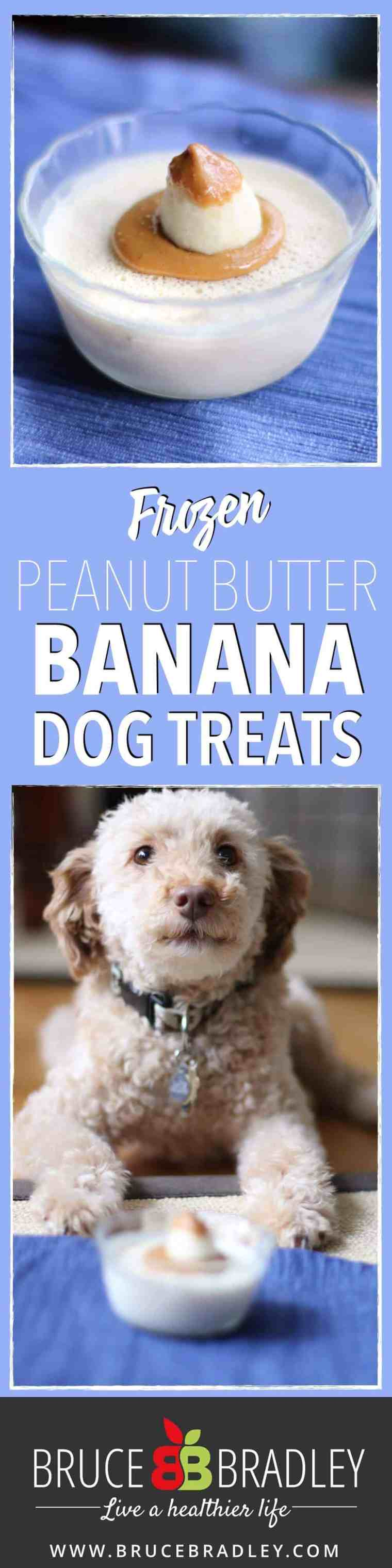 Our special three ingredient, REAL food frozen dog treats are super easy to make, and oh boy does our dog love them!