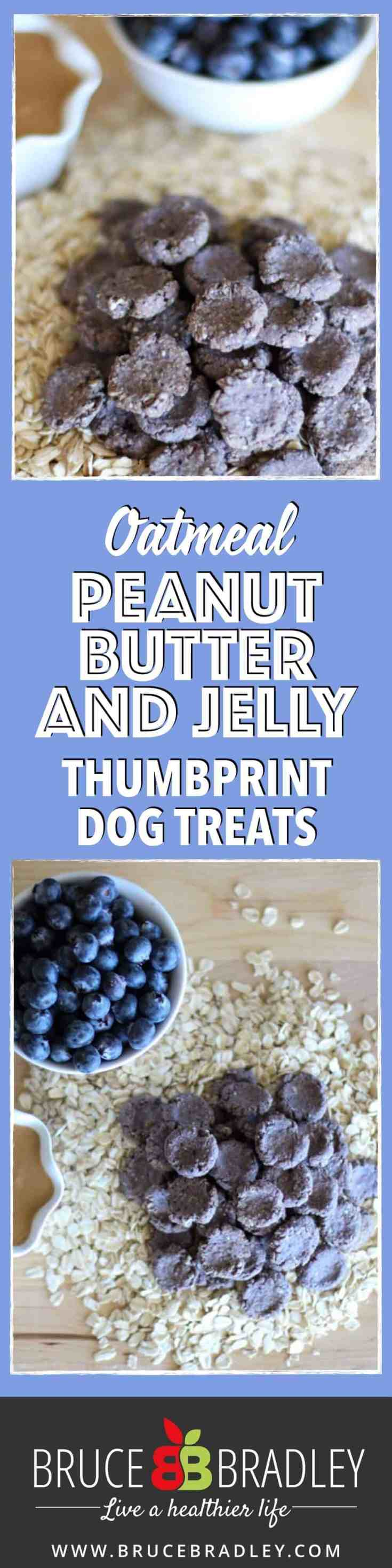 These Homemade Peanut Butter Dog Treats are made with 100% real ingredients like oatmeal, peanut butter, blueberries, and applesauce. No additives or artificial ingredients for your puppy!