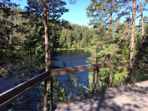 Lake view from Stigmanspasset boardwalk.