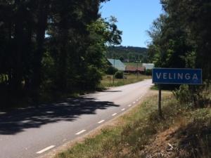 Velinga, 2018
