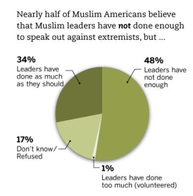 pew muslim attitudes