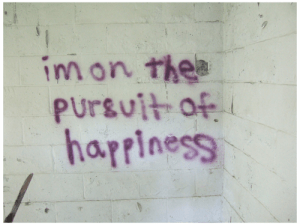 choice pursuit of happiness