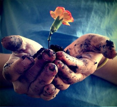 dirty hands flower