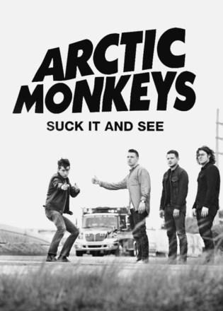 arctic monkey suck it and