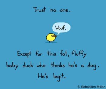 trust just fluffy duck
