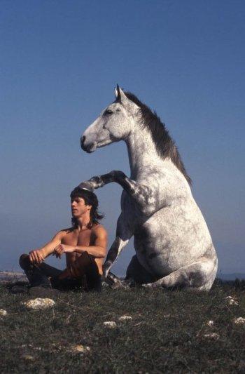 horse zen
