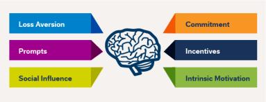 behavior predict Brain