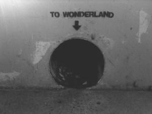 wonderland tunnel