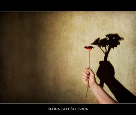 seeing is seeing tree