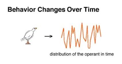 behavior change time