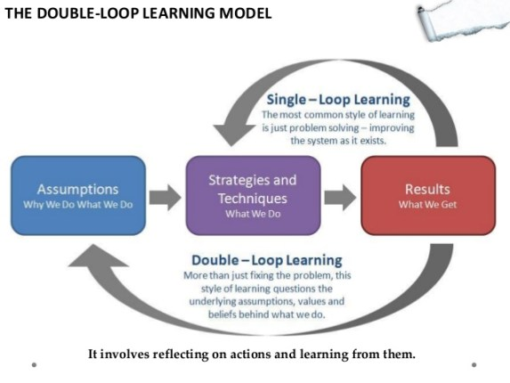 double loop learning and why telaffects successful