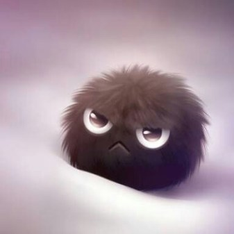 angry-look-fluff