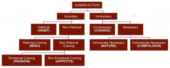excuse aristotle human action voluntary irrational
